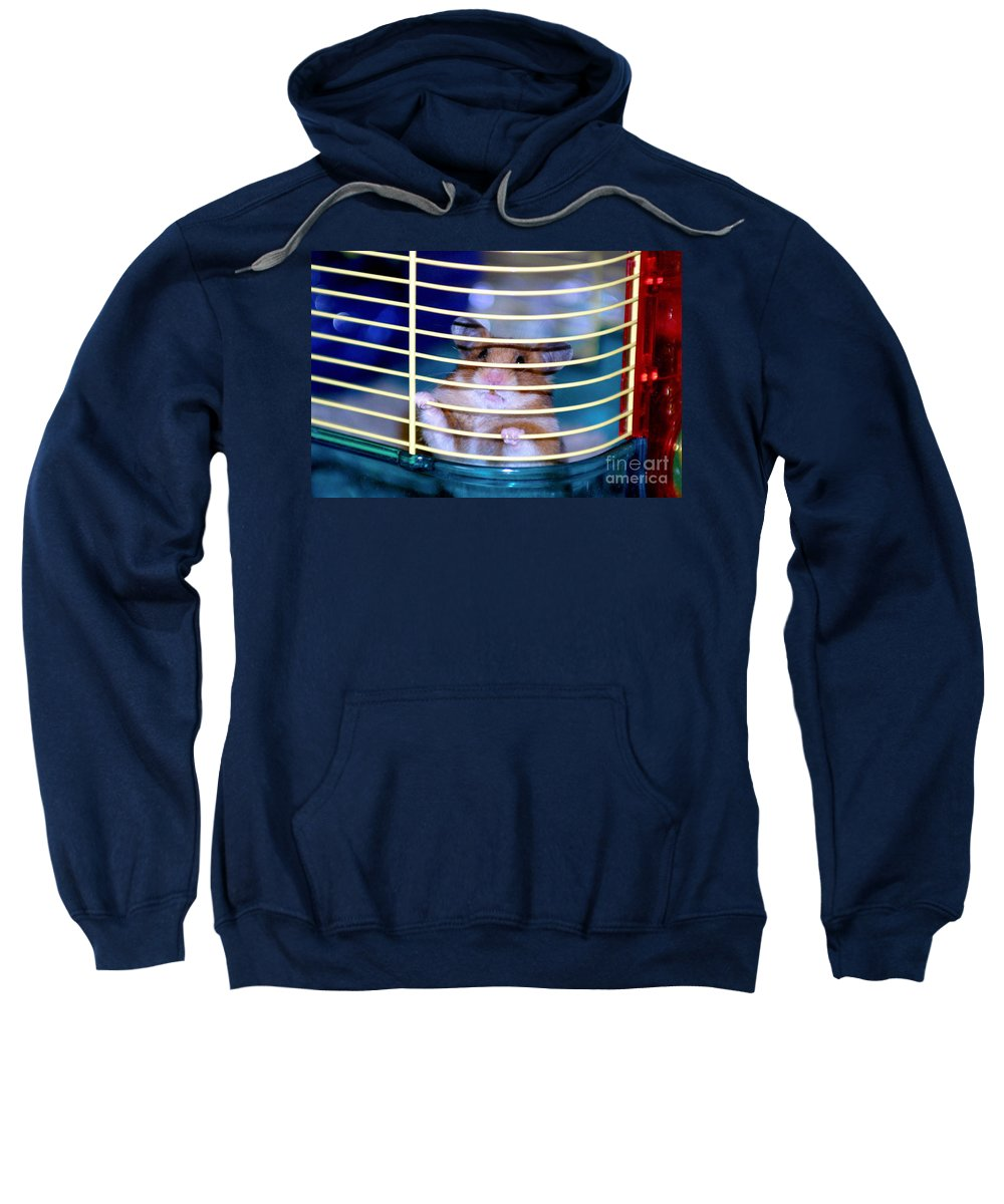 Animal Sweatshirt featuring the photograph Gangster Hamster by Alan Look
