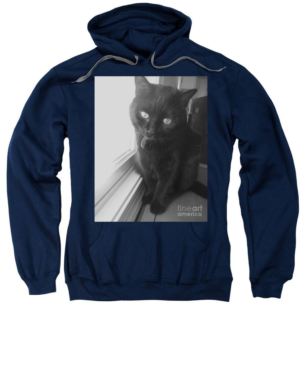 Cat Sweatshirt featuring the photograph Gepetto The Cat by Eric Schiabor