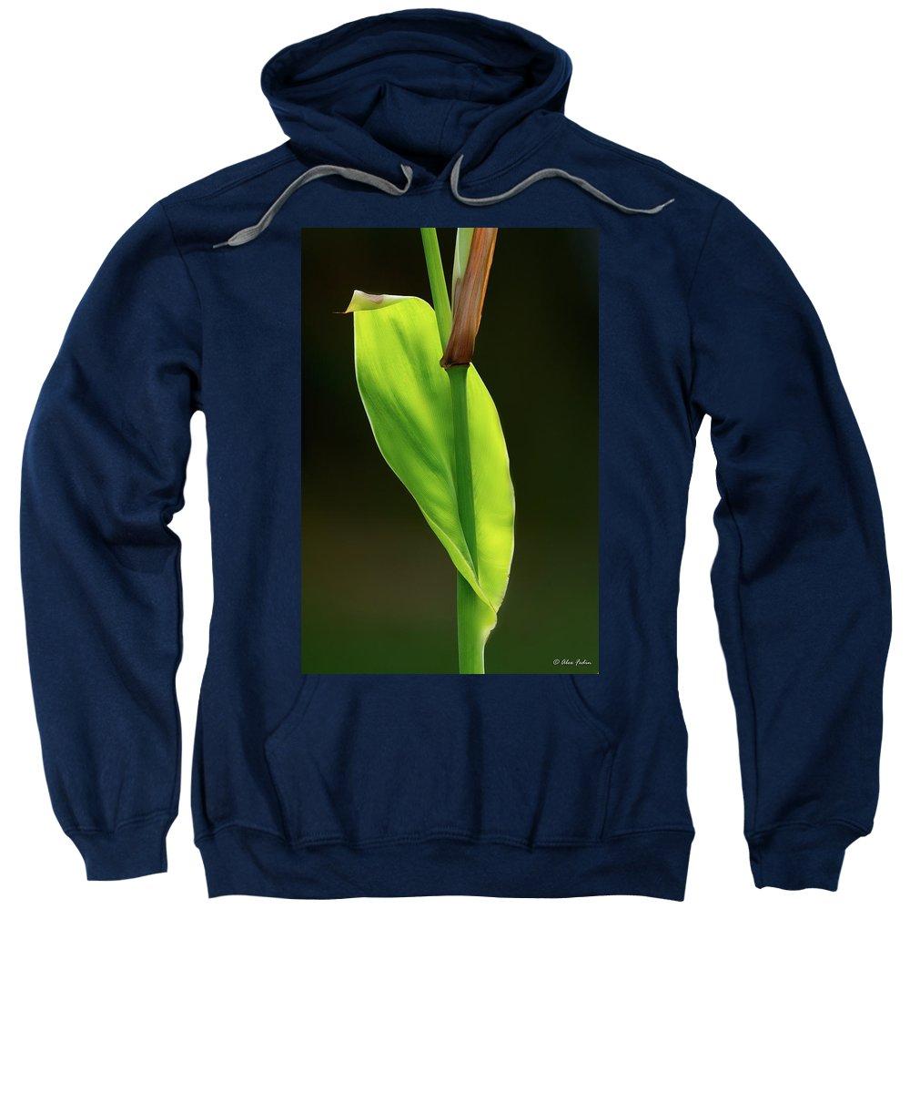 Leaf Sweatshirt featuring the photograph Green by Alexander Fedin