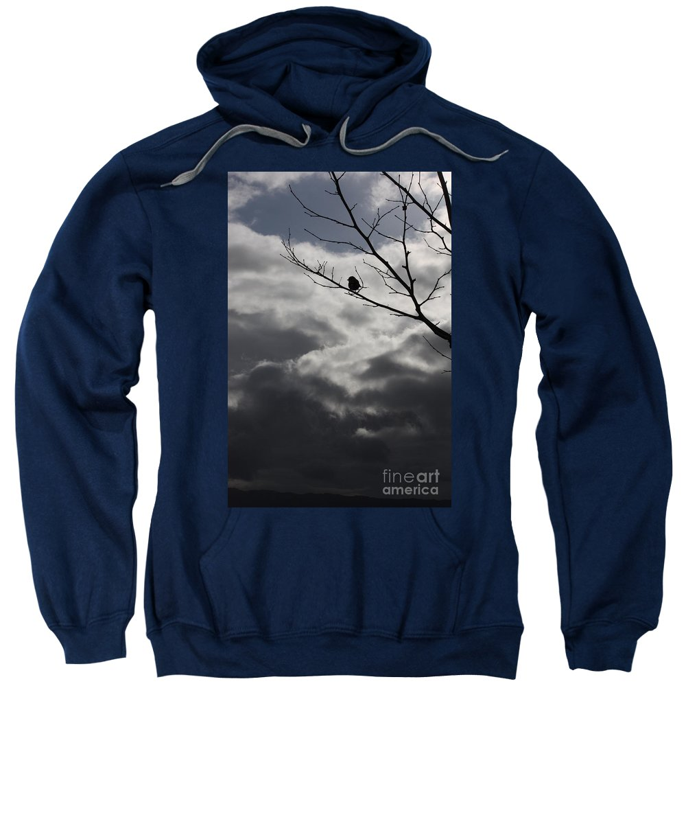 Storm Sweatshirt featuring the photograph Keeping Above The Storm by Carol Groenen