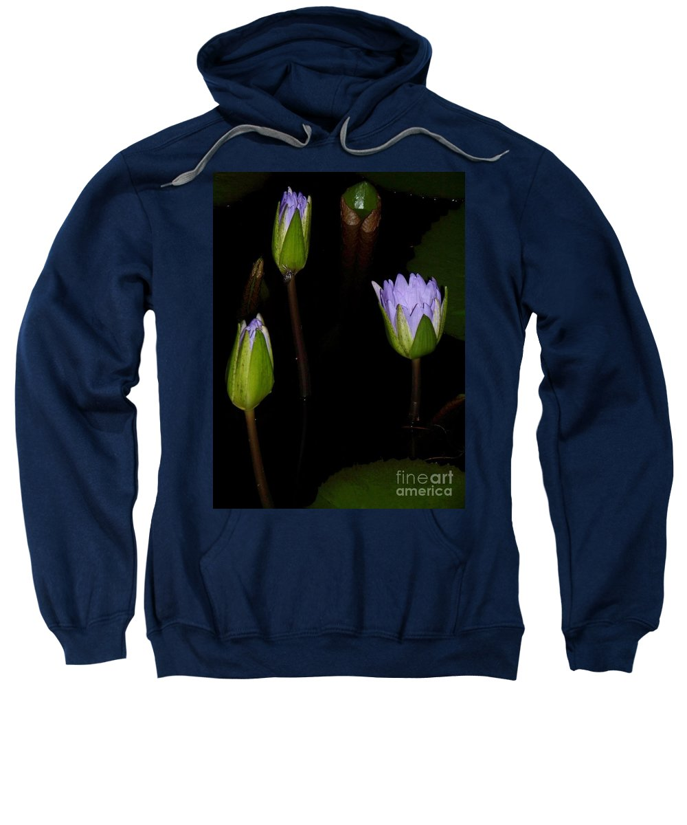 Purple Sweatshirt featuring the painting Light Violet Lilies by Eric Schiabor