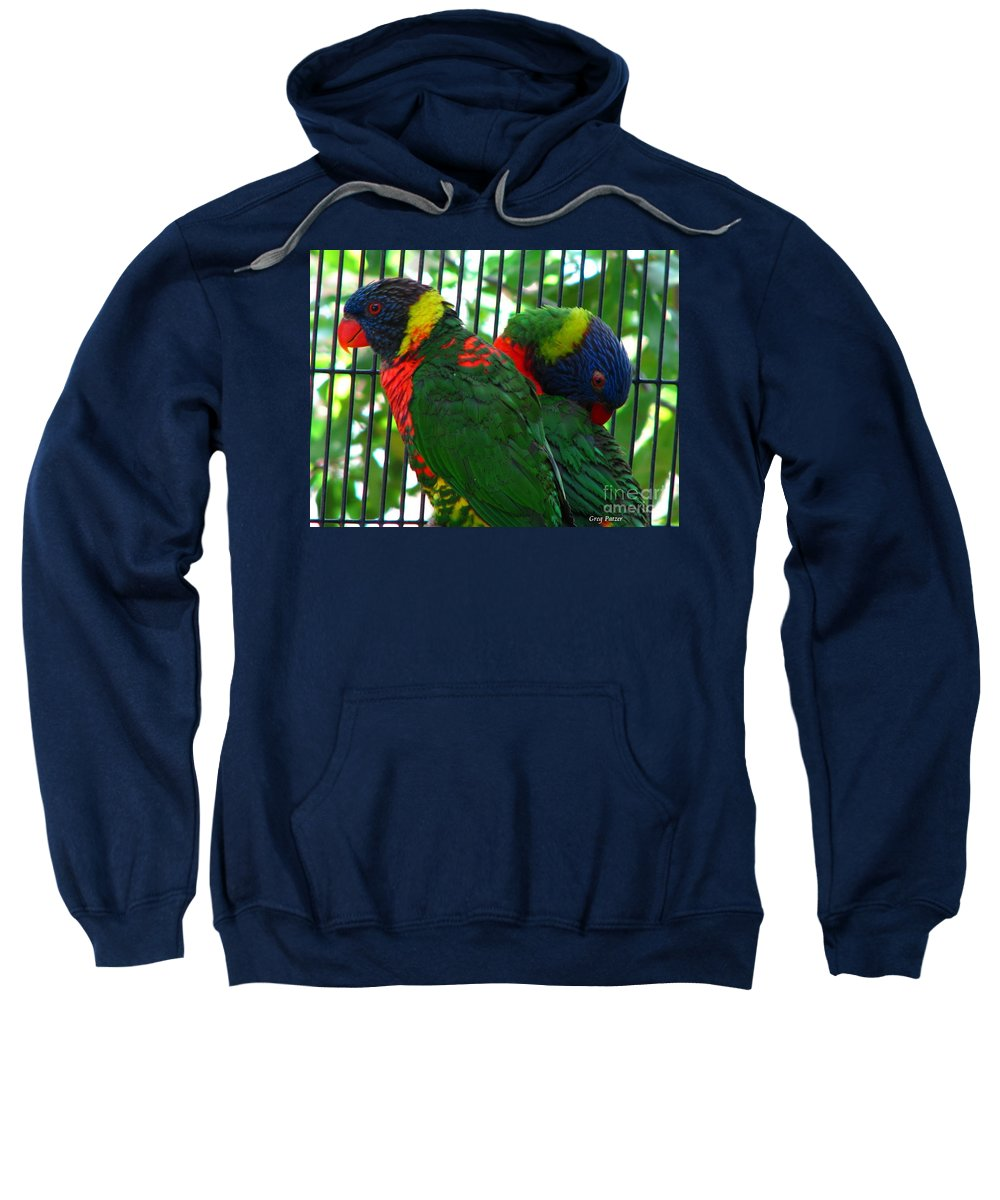Patzer Sweatshirt featuring the photograph Lory by Greg Patzer