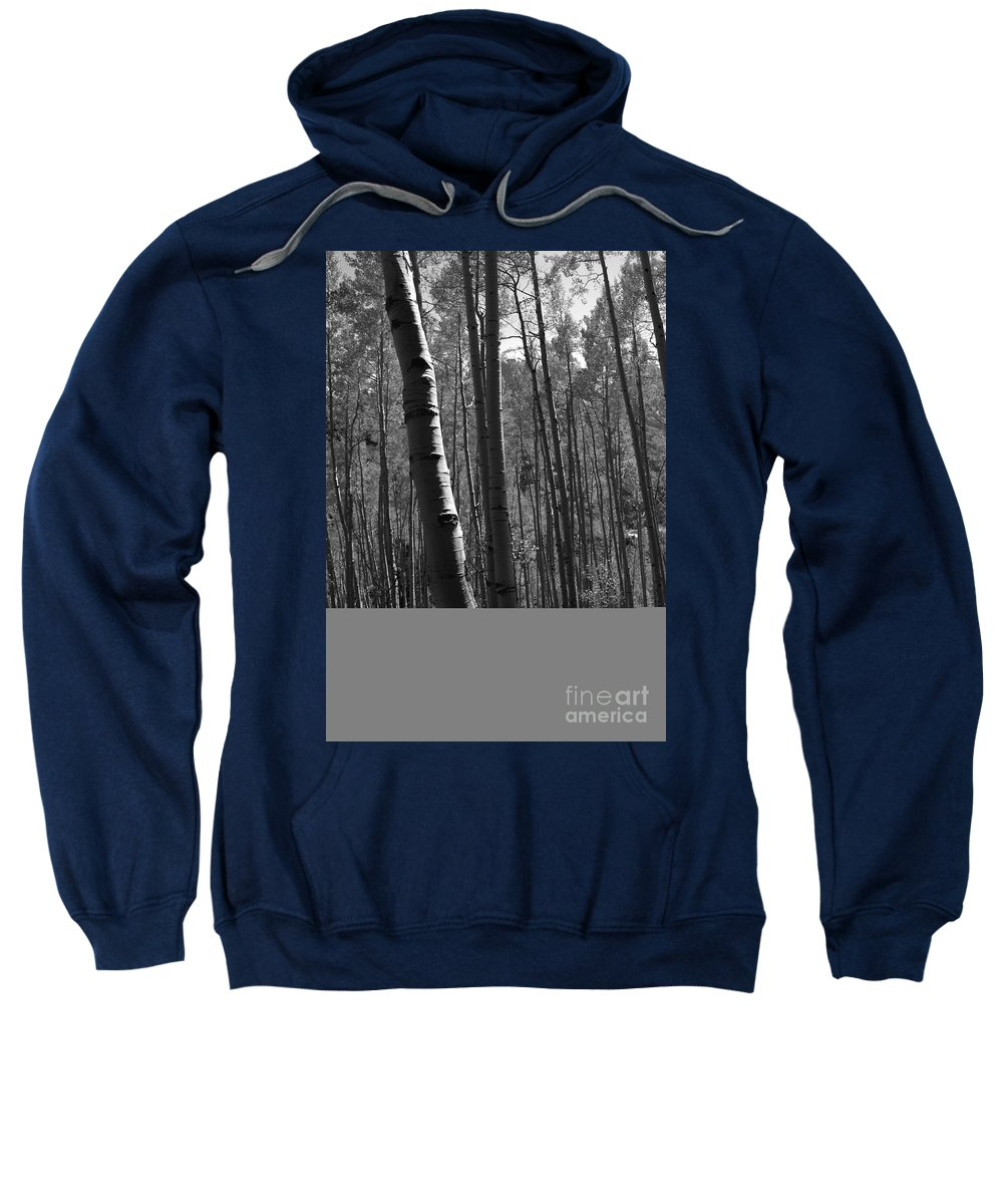 Mountains Sweatshirt featuring the photograph Mountain Aspens by David Lee Thompson