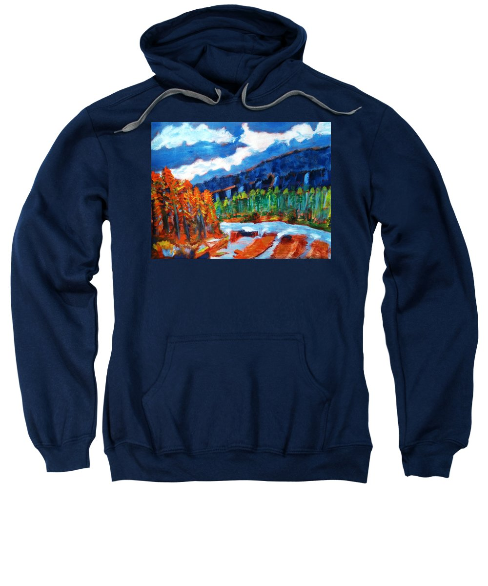 Mountains Sweatshirt featuring the painting Naturals by R B