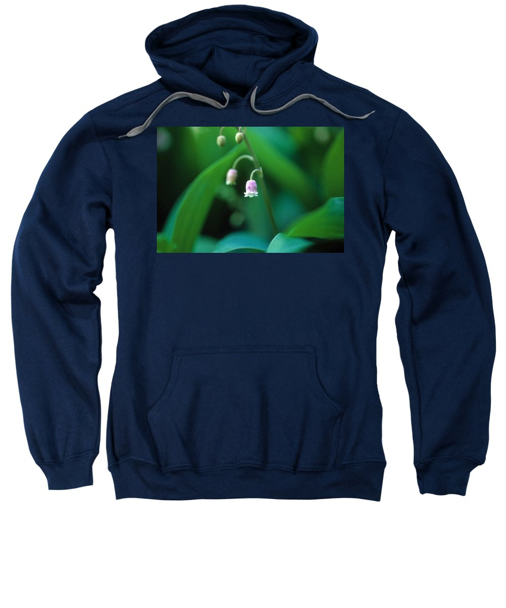 Lilly Of The Valley Sweatshirt featuring the photograph Nurys Lilly by Laurie Paci