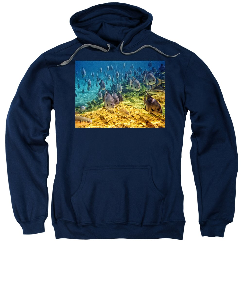 Fish Sweatshirt featuring the photograph Oceans Below by Mark Madere