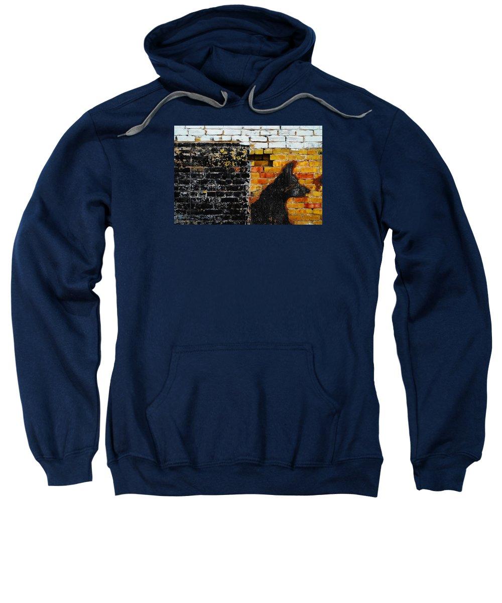 Skip Hunt Sweatshirt featuring the photograph Omen by Skip Hunt