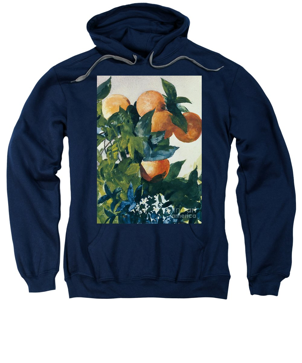 Oranges On A Branch Sweatshirt featuring the painting Oranges On A Branch by Winslow Homer