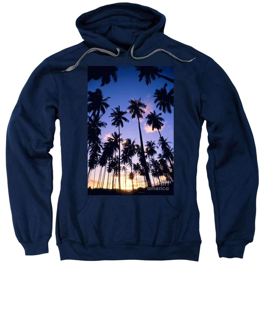 Allan Seiden Sweatshirt featuring the photograph Palm Grove by Allan Seiden - Printscapes