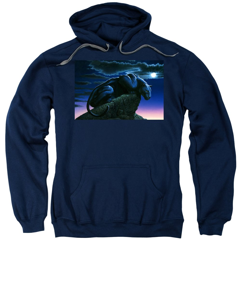 Aggressive Sweatshirt featuring the photograph Panther On Rock by MGL Studio - Chris Hiett