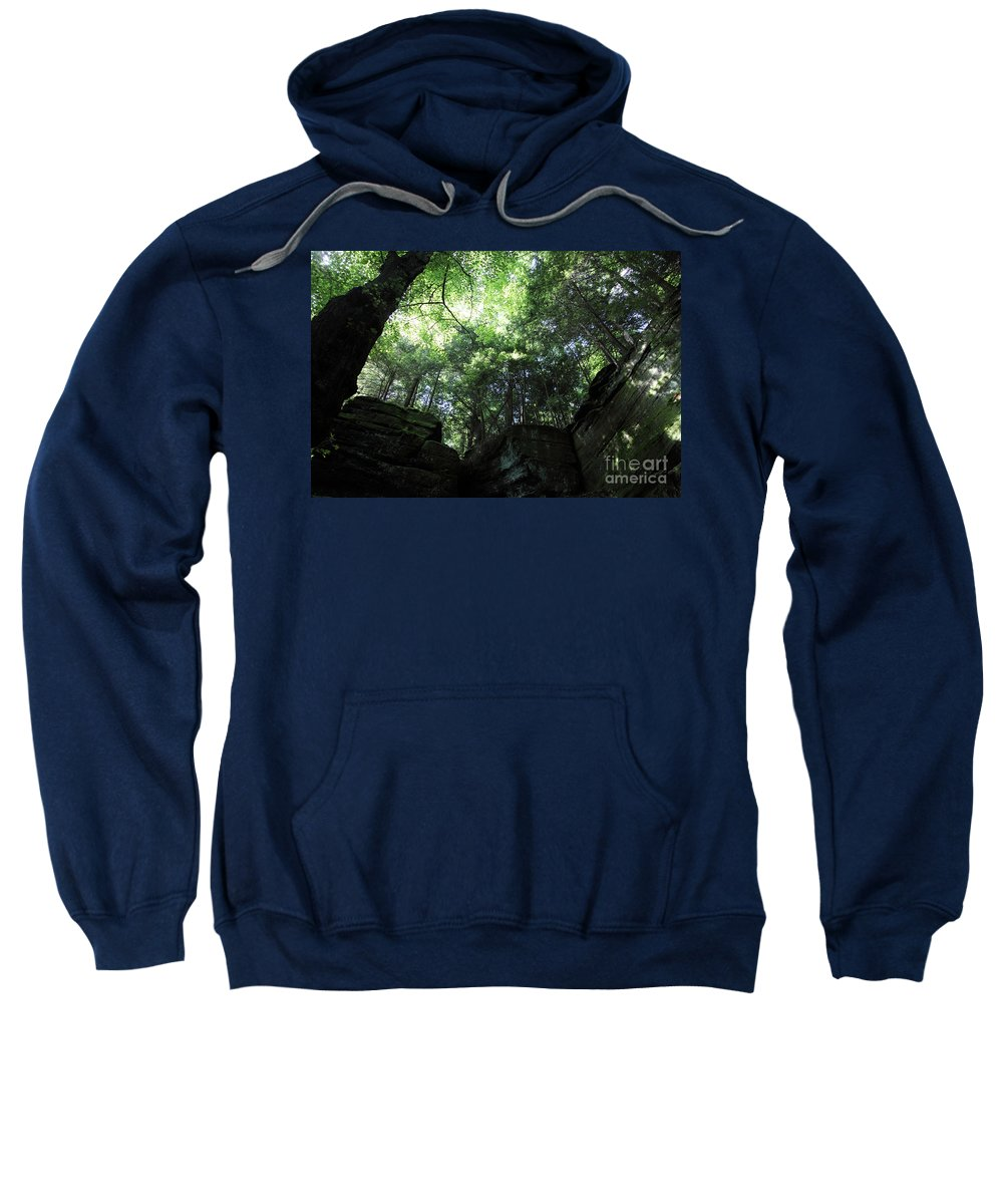 Nature Sweatshirt featuring the photograph Peace All Around by Amanda Barcon