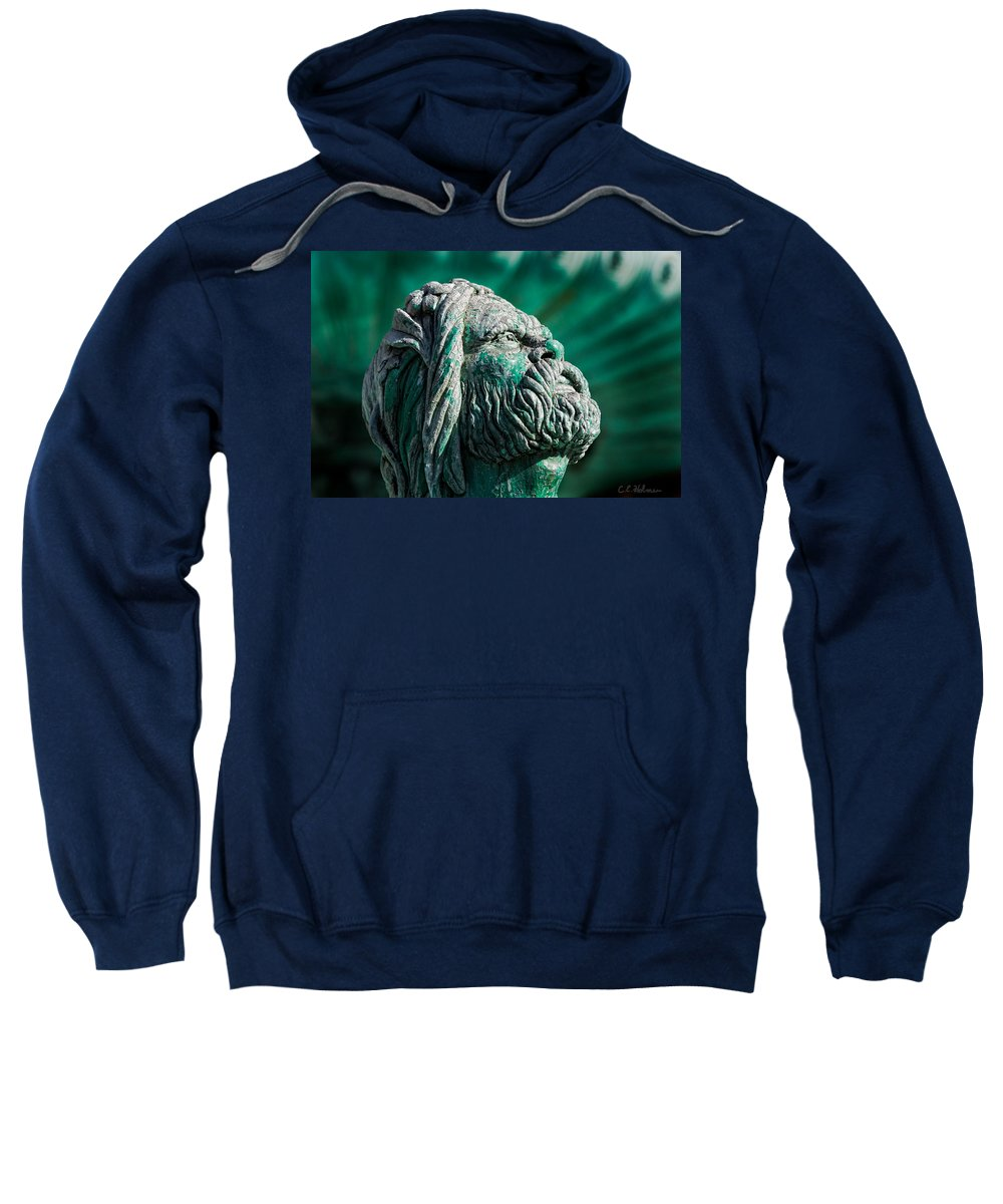 Blue Sweatshirt featuring the photograph Peering Beyond The Waves by Christopher Holmes