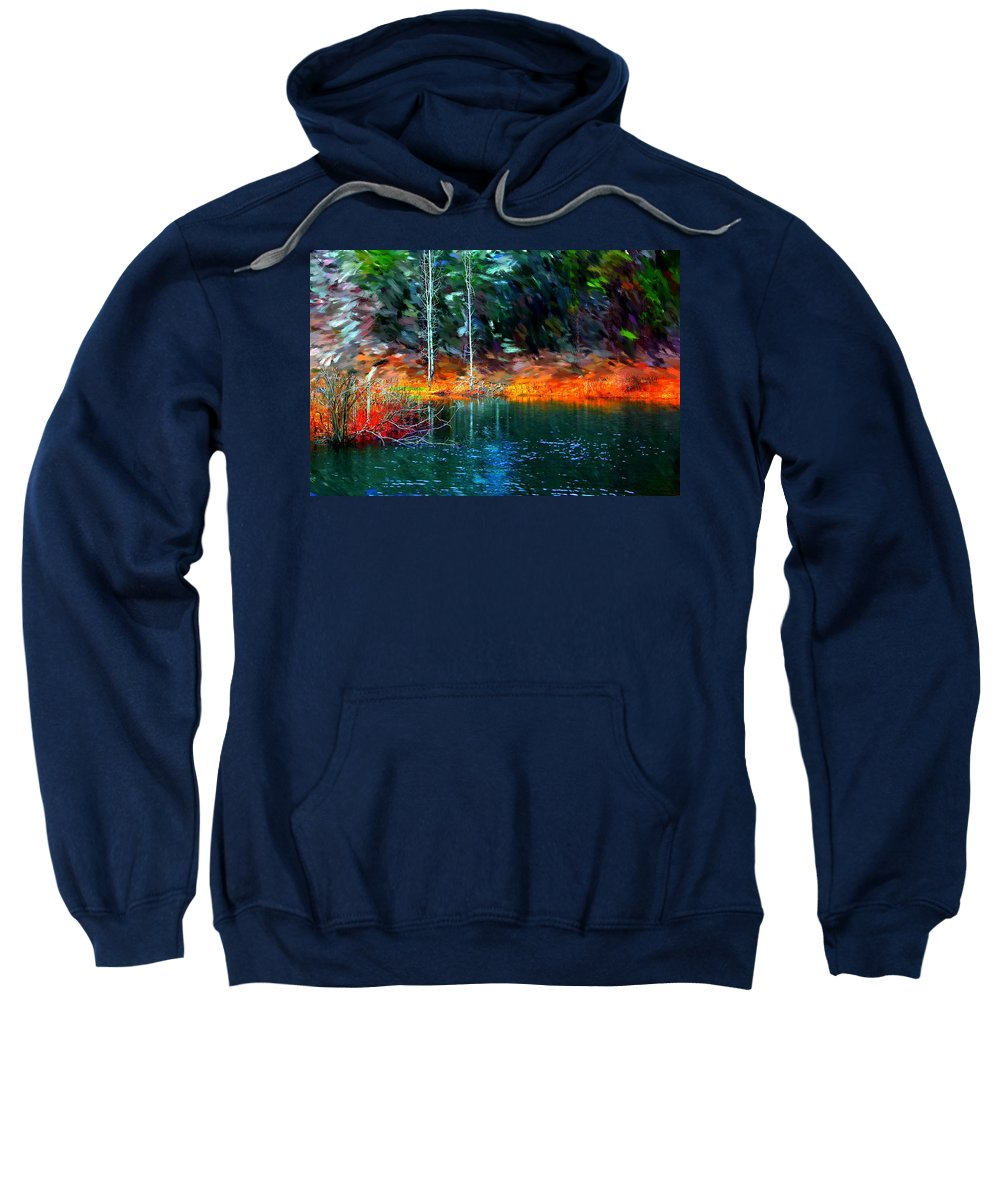 Digital Photograph Sweatshirt featuring the photograph Pond In The Woods by David Lane