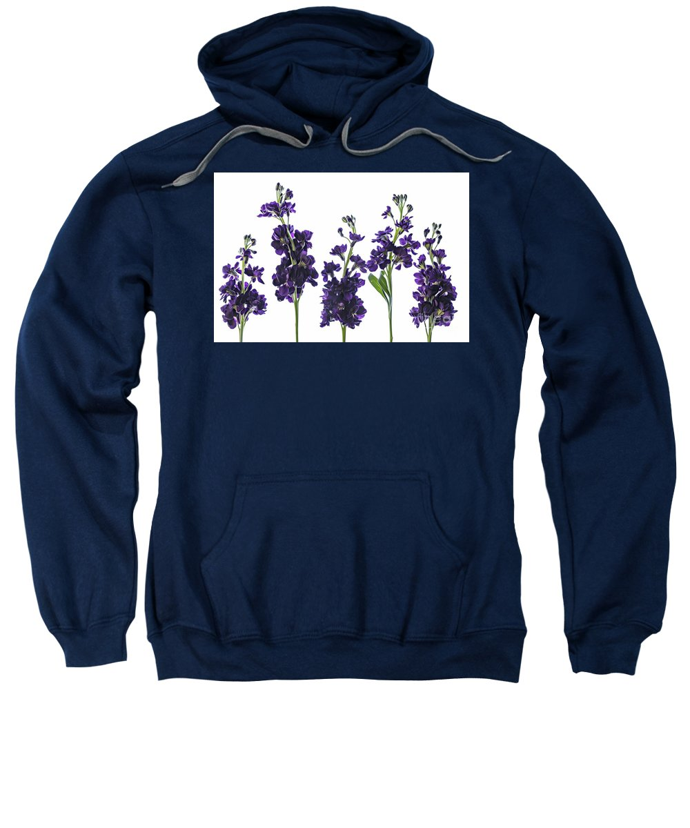 Purple Sweatshirt featuring the pyrography Purple Floral 1 by Kelly Merlini