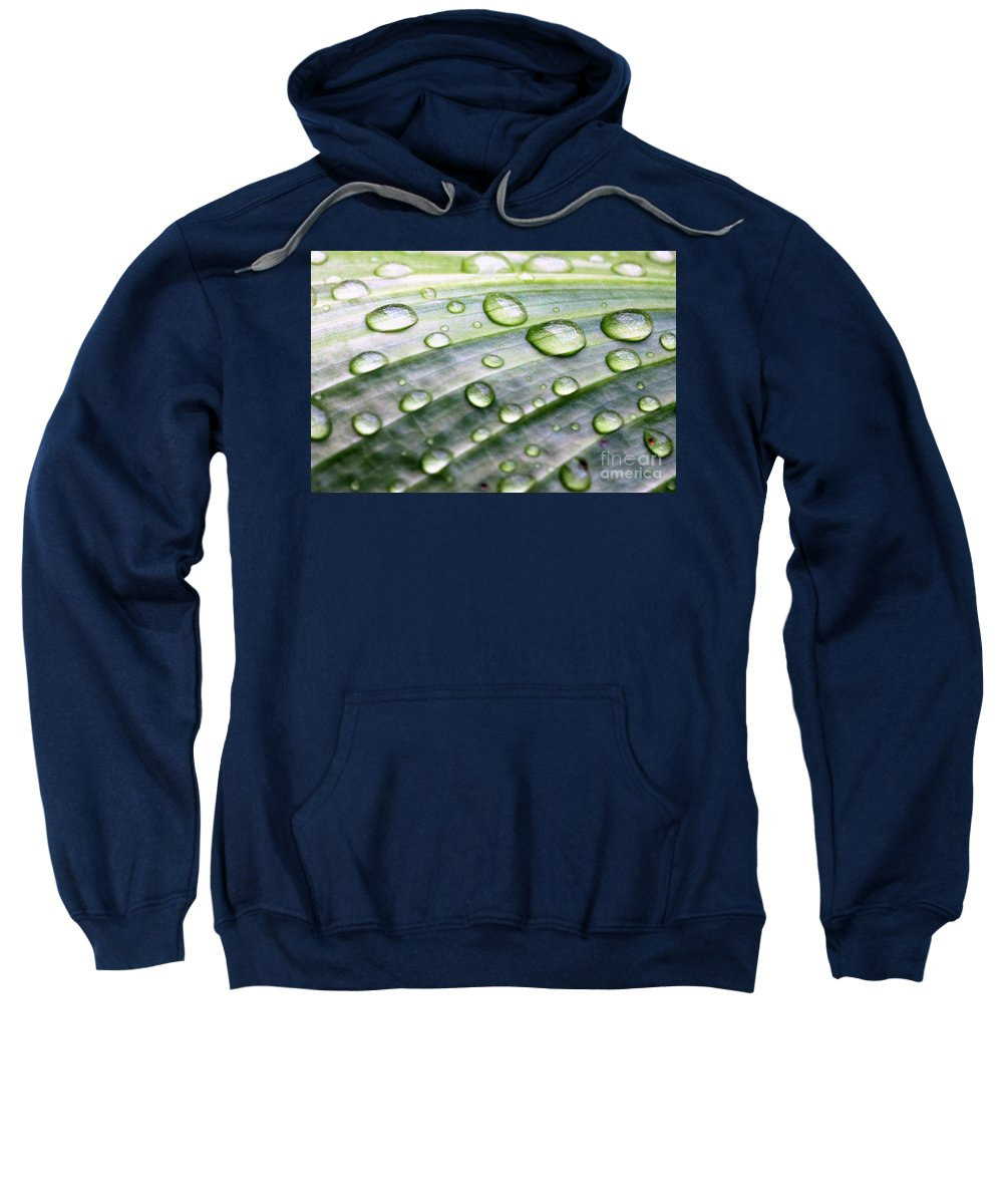 Drops Of Rain On The Reverse Veins Of Peace Lily Plant Leaf Sweatshirt featuring the photograph Rain Drops On A Leaf by Diann Fisher