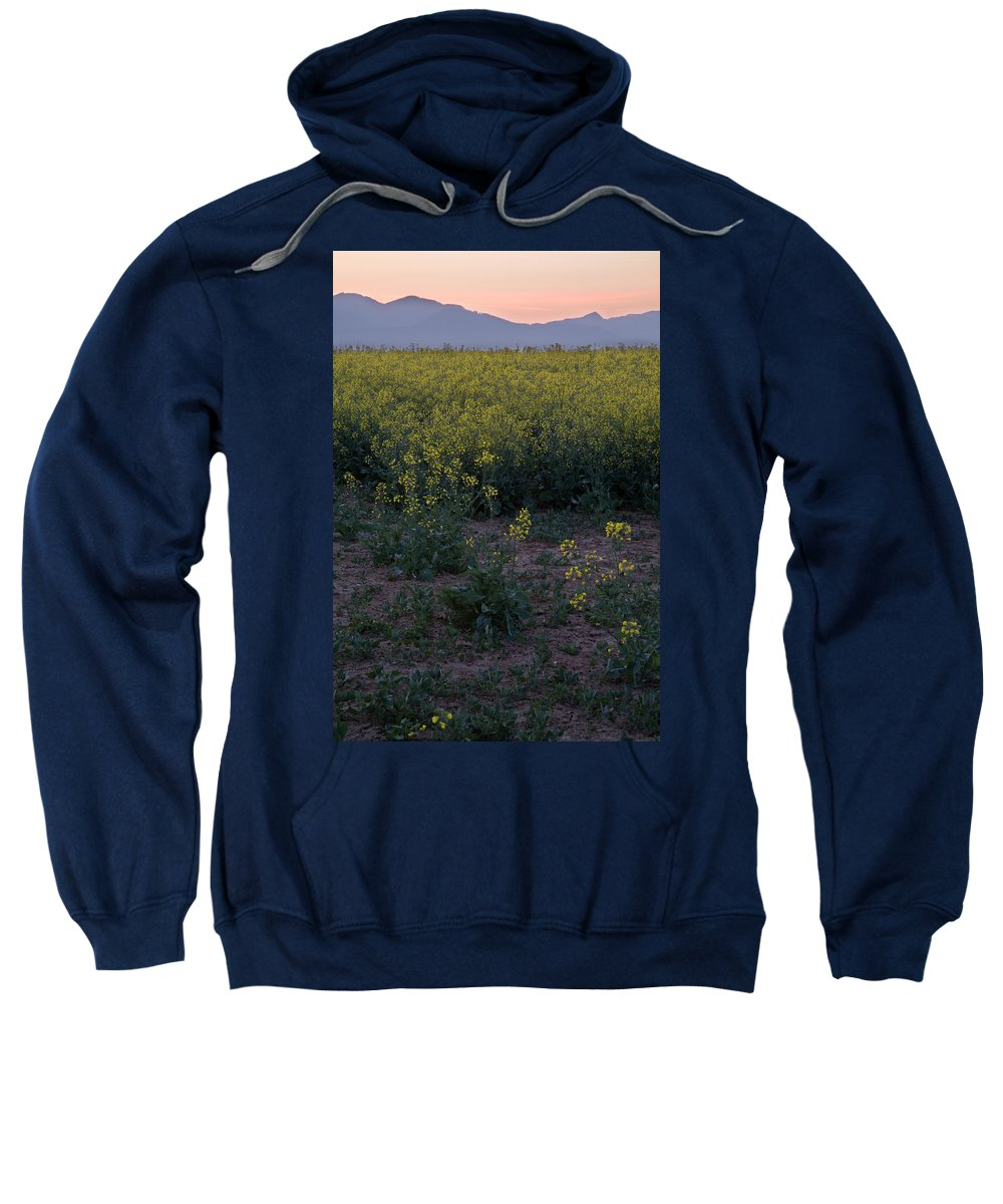 Brnik Sweatshirt featuring the photograph Rapeseed At Dawn by Ian Middleton