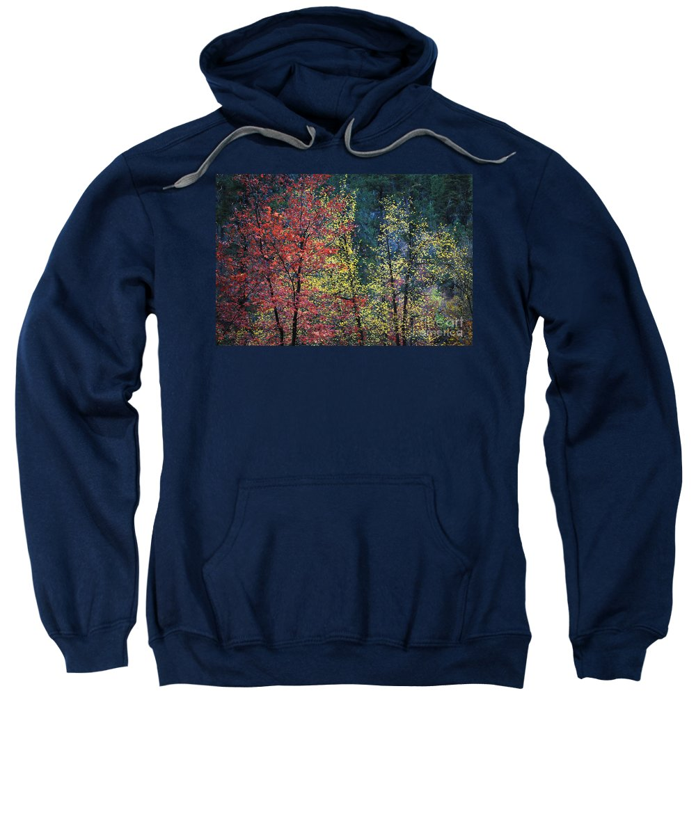 Landscape Sweatshirt featuring the photograph Red And Yellow Leaves Abstract Horizontal Number 1 by Heather Kirk