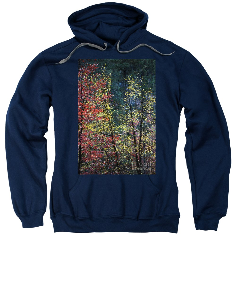 Landscape Sweatshirt featuring the photograph Red And Yellow Leaves Abstract Vertical Number 2 by Heather Kirk