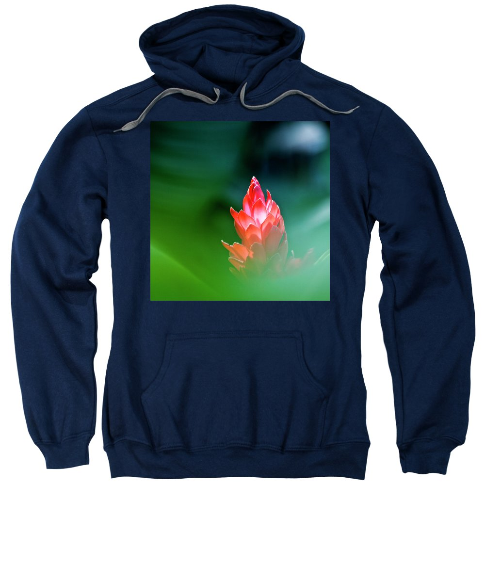 Ginger Flower Sweatshirt featuring the photograph Red Ginger by Heiko Koehrer-Wagner