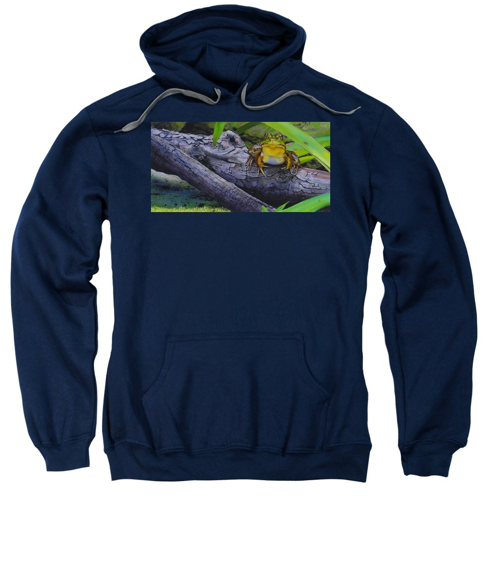 Frog Sweatshirt featuring the painting Restingplace by Denny Bond