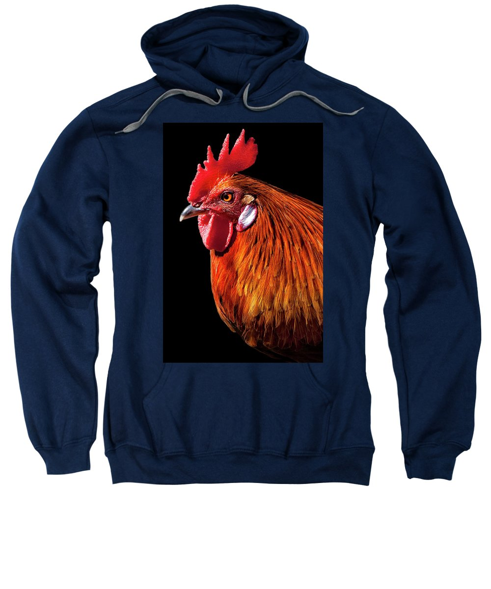 Rooster Sweatshirt featuring the photograph Rooster Pride by Janet Fikar