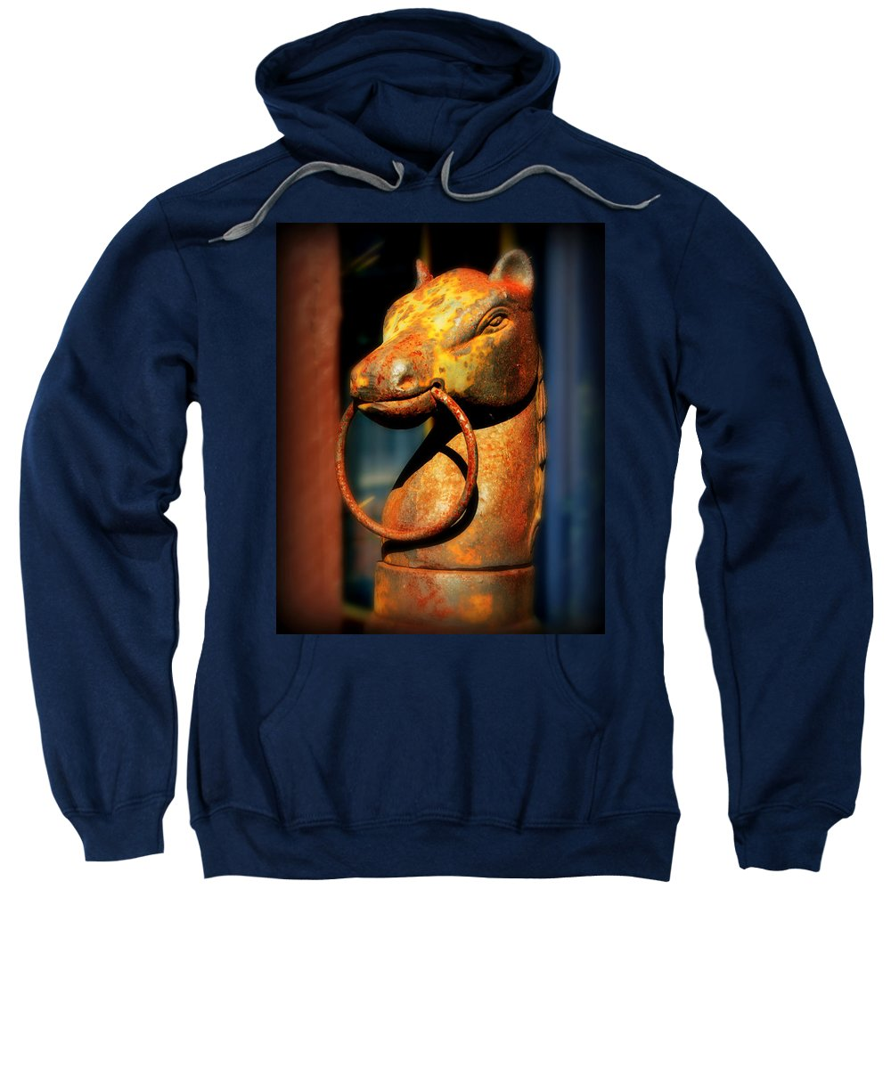 Horse Sweatshirt featuring the photograph Rusty Horse by Perry Webster