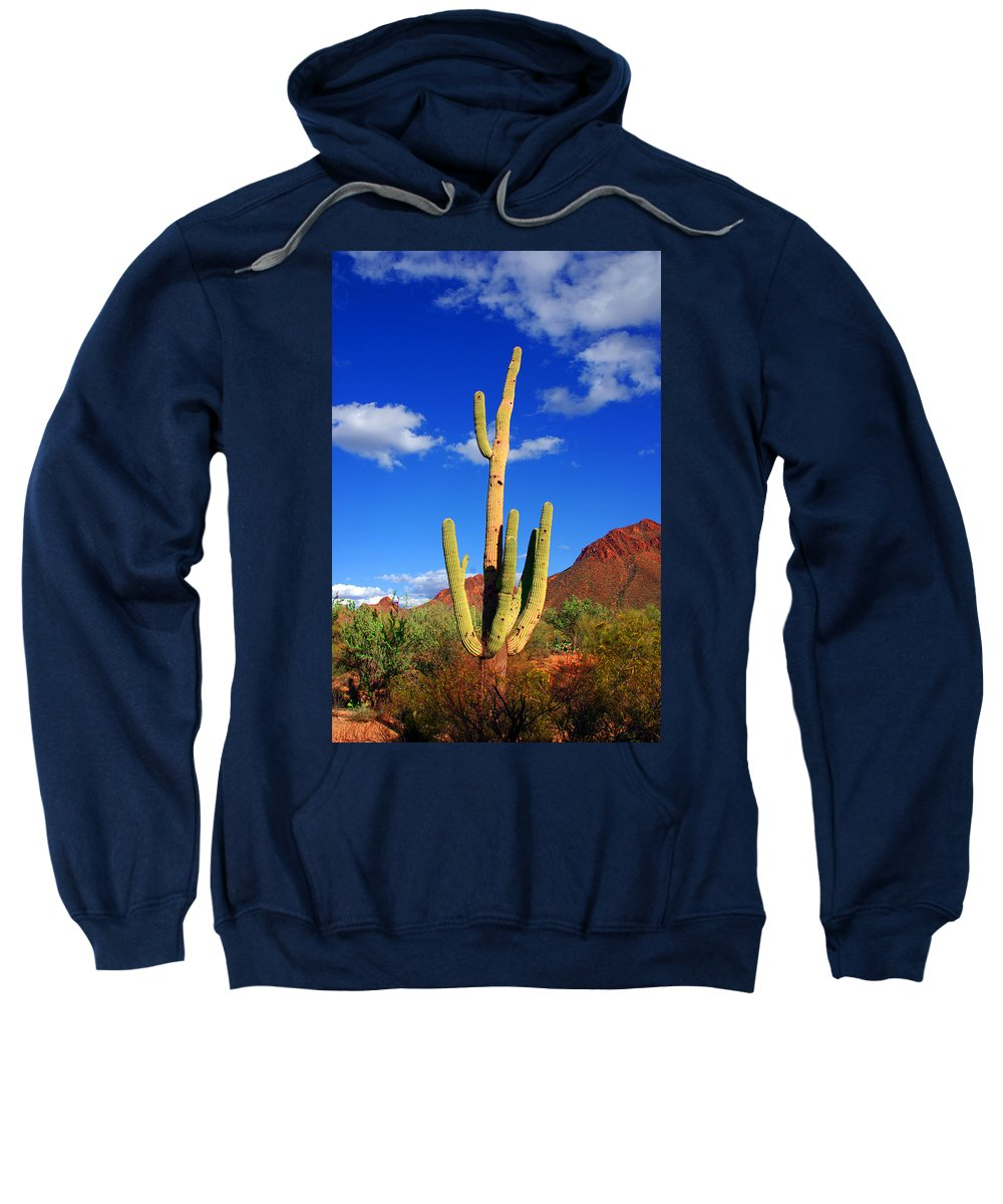 Photography Sweatshirt featuring the photograph Saguaro Np by Susanne Van Hulst