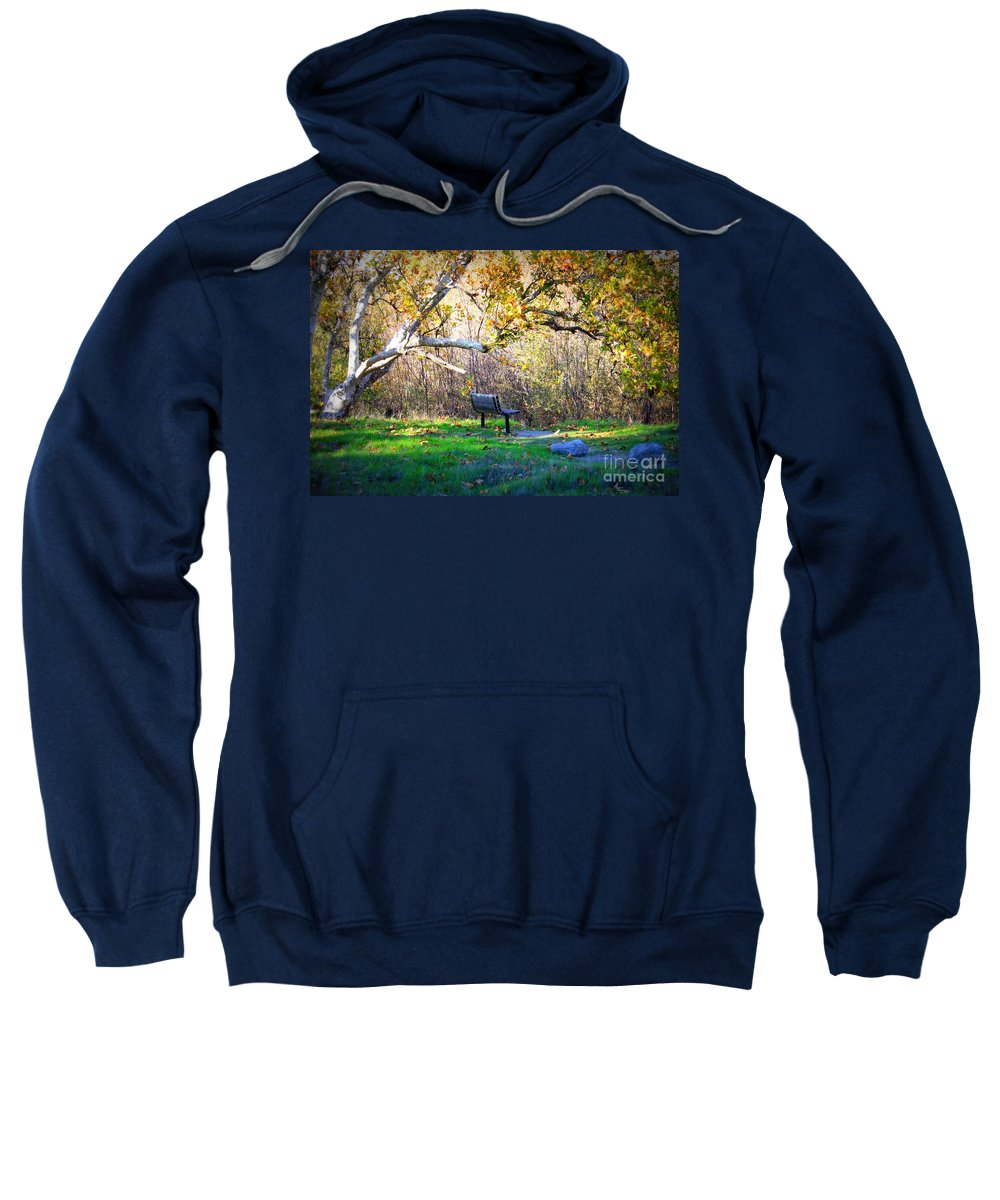 Landscape Sweatshirt featuring the photograph Solitude Under The Sycamore by Carol Groenen