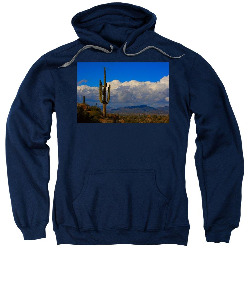 Southwest Sweatshirt featuring the photograph Southwest Saguaro Desert Landscape by James BO Insogna