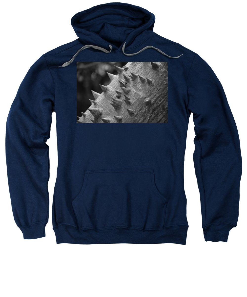 Spike Sweatshirt featuring the photograph Spikey Thorny Tree by Rob Hans