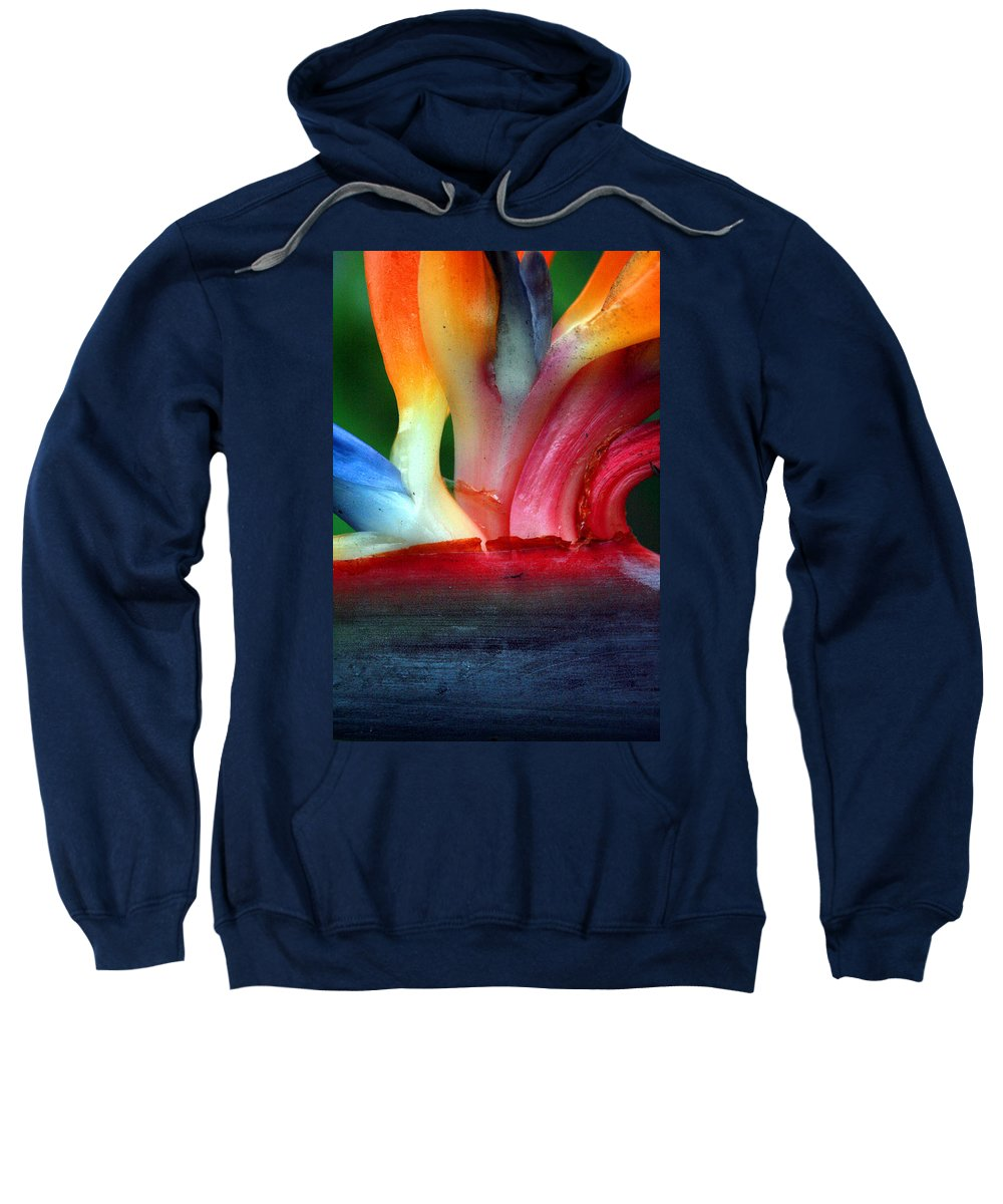 Flower Sweatshirt featuring the photograph Study Of A Bird Of Paradise 3 by Jennifer Bright