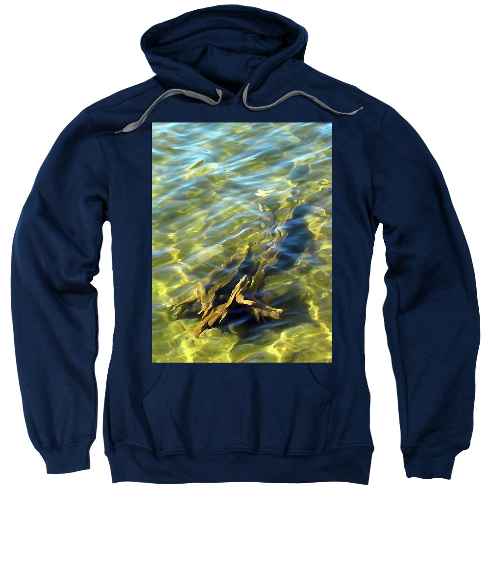 Tree Trunk Sweatshirt featuring the photograph Submerged Tree Abstract by David T Wilkinson