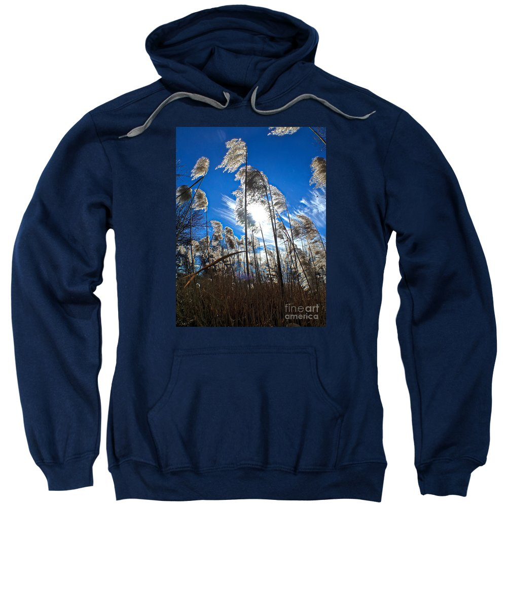 Clouds Sweatshirt featuring the photograph Sunny Marsh Beauty by Marty Kugler