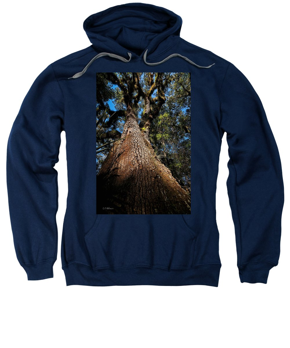 Tree Sweatshirt featuring the photograph Tall Oak by Christopher Holmes