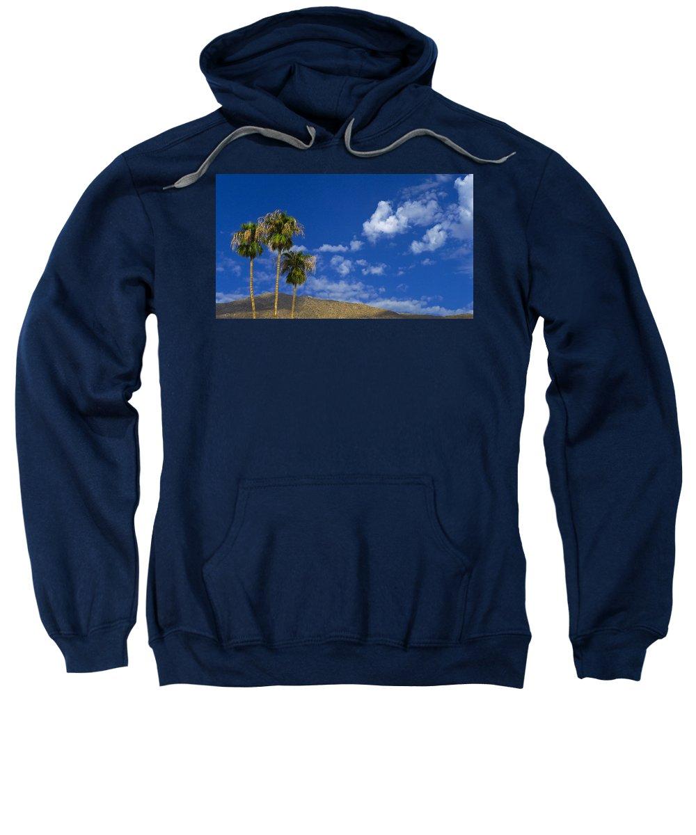 Tres Amigos Sweatshirt featuring the photograph Tres Amigos by Skip Hunt
