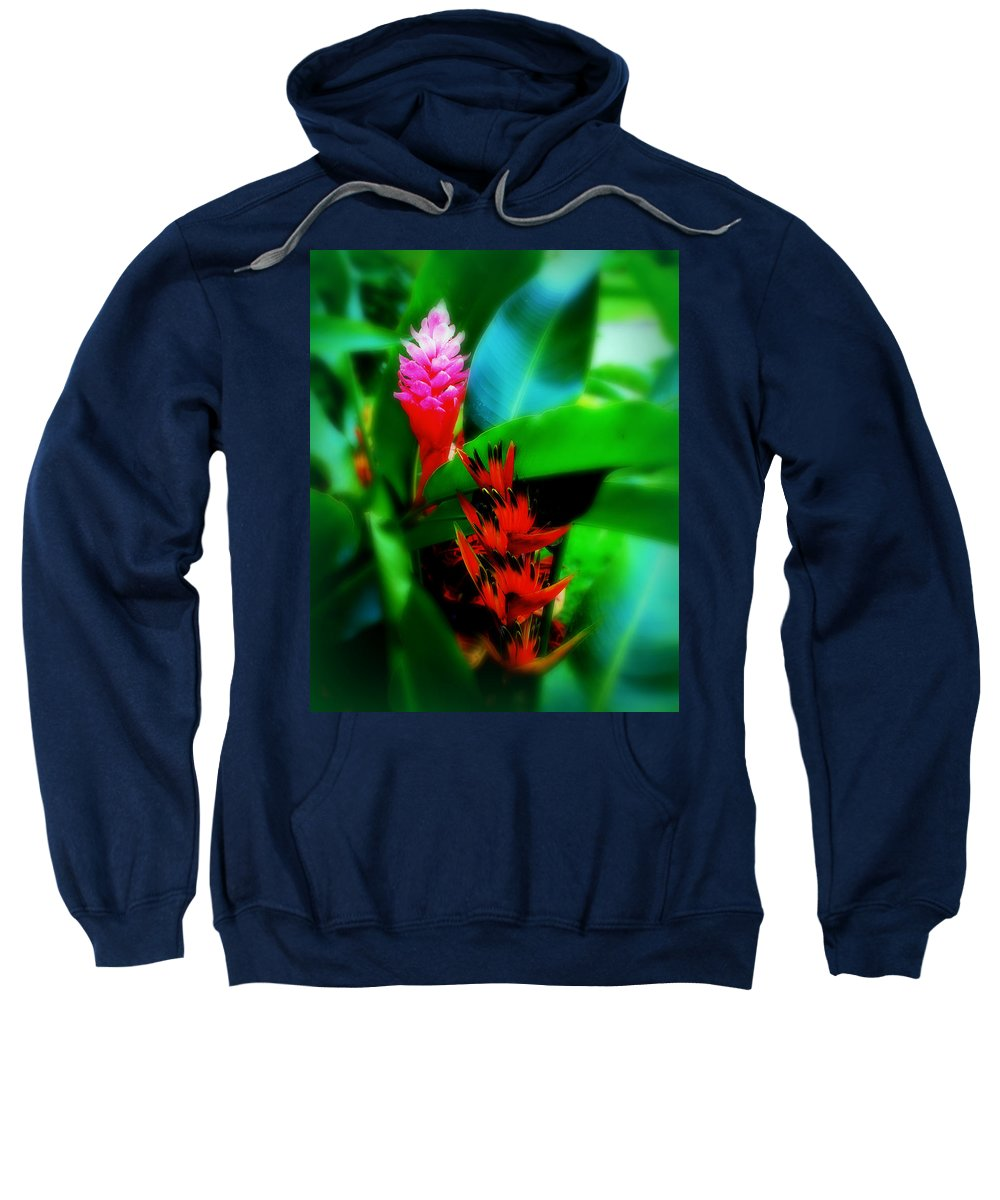 Plants Sweatshirt featuring the photograph Tropical Plants by Perry Webster