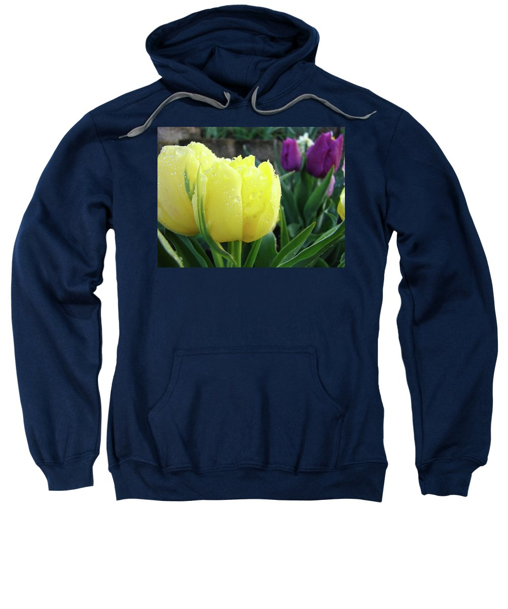 �tulips Artwork� Sweatshirt featuring the photograph Tulip Flowers Artwork Tulips Art Prints 10 Floral Art Gardens Baslee Troutman by Baslee Troutman