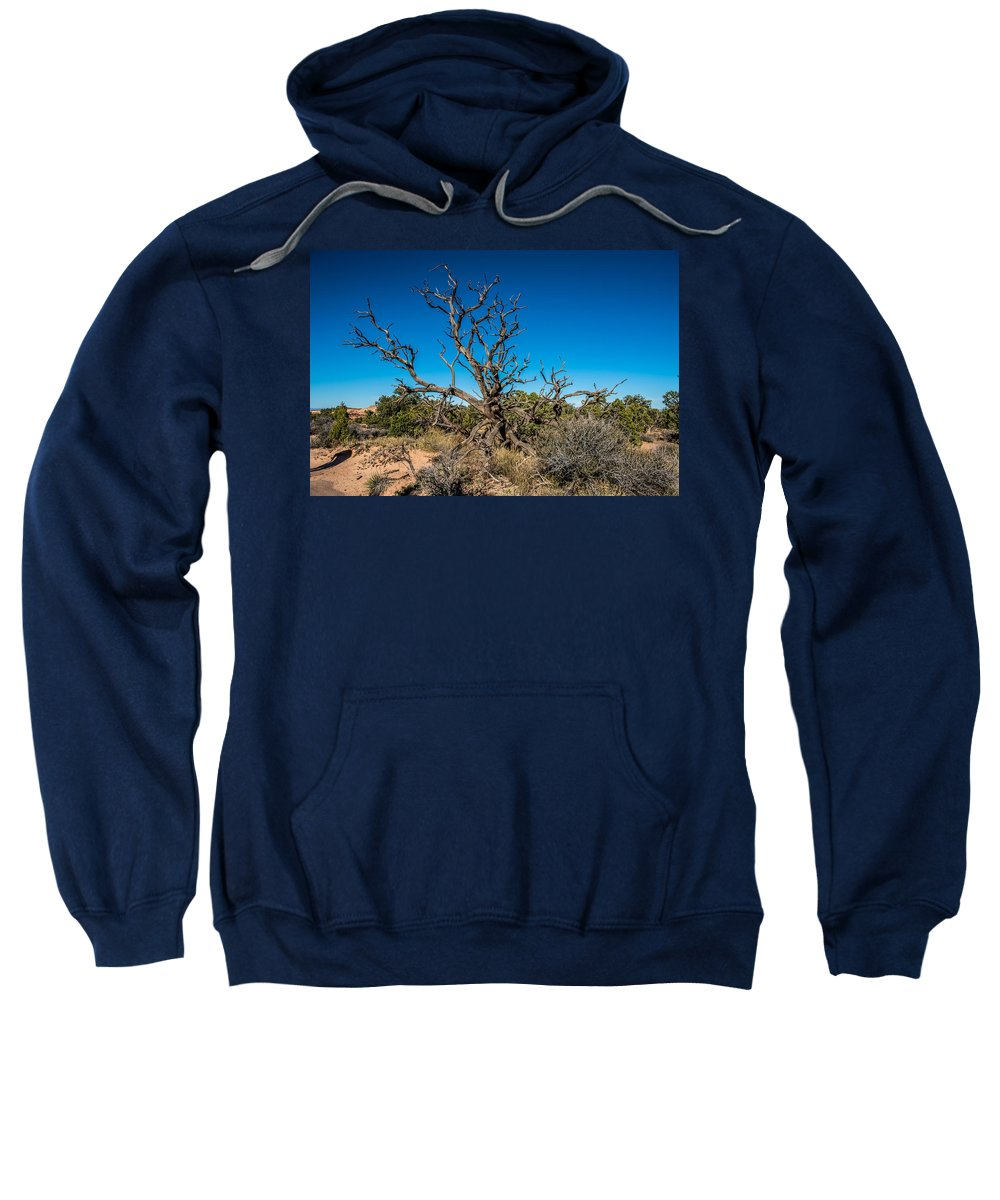 Utah Juniper Sweatshirt featuring the photograph Utah Juniper by Paul Freidlund
