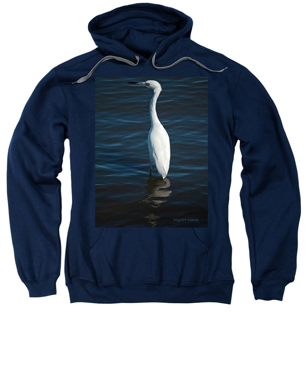 Bird Sweatshirt featuring the digital art Wading Reflections by DigiArt Diaries by Vicky B Fuller