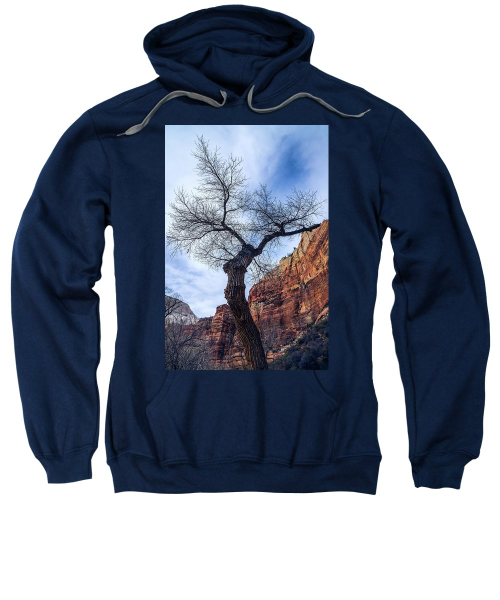 Clouds Sweatshirt featuring the photograph Zion Tree Woman by Sheryl Trunick