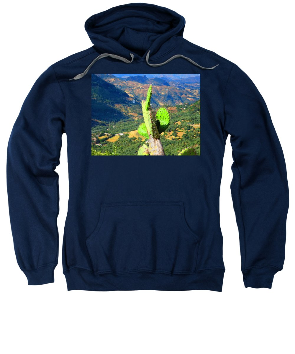 Cactus Sweatshirt featuring the photograph Cactus by Adil Boulouiha