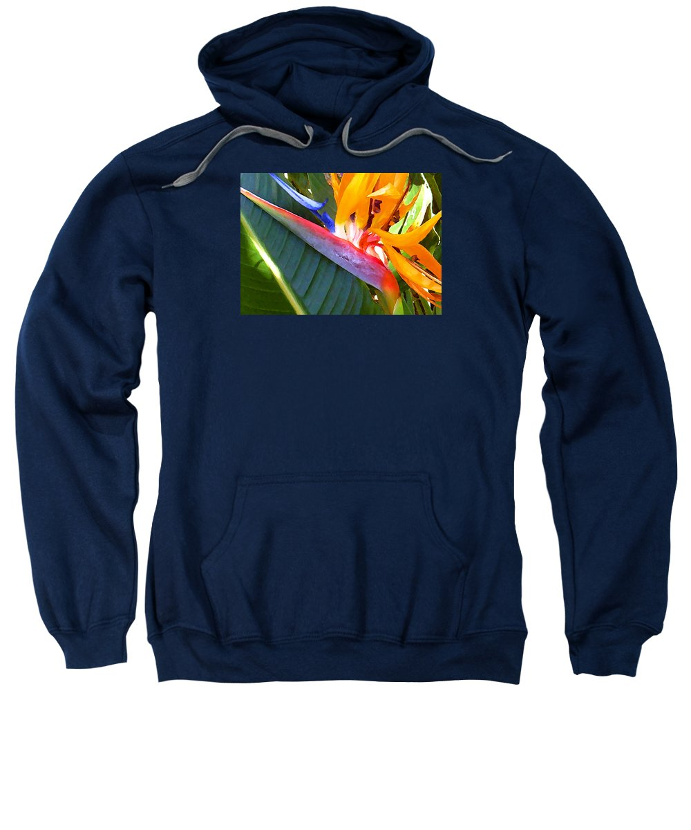 Hawaii Greeting Cards Sweatshirt featuring the photograph Bird of Paradise by James Temple
