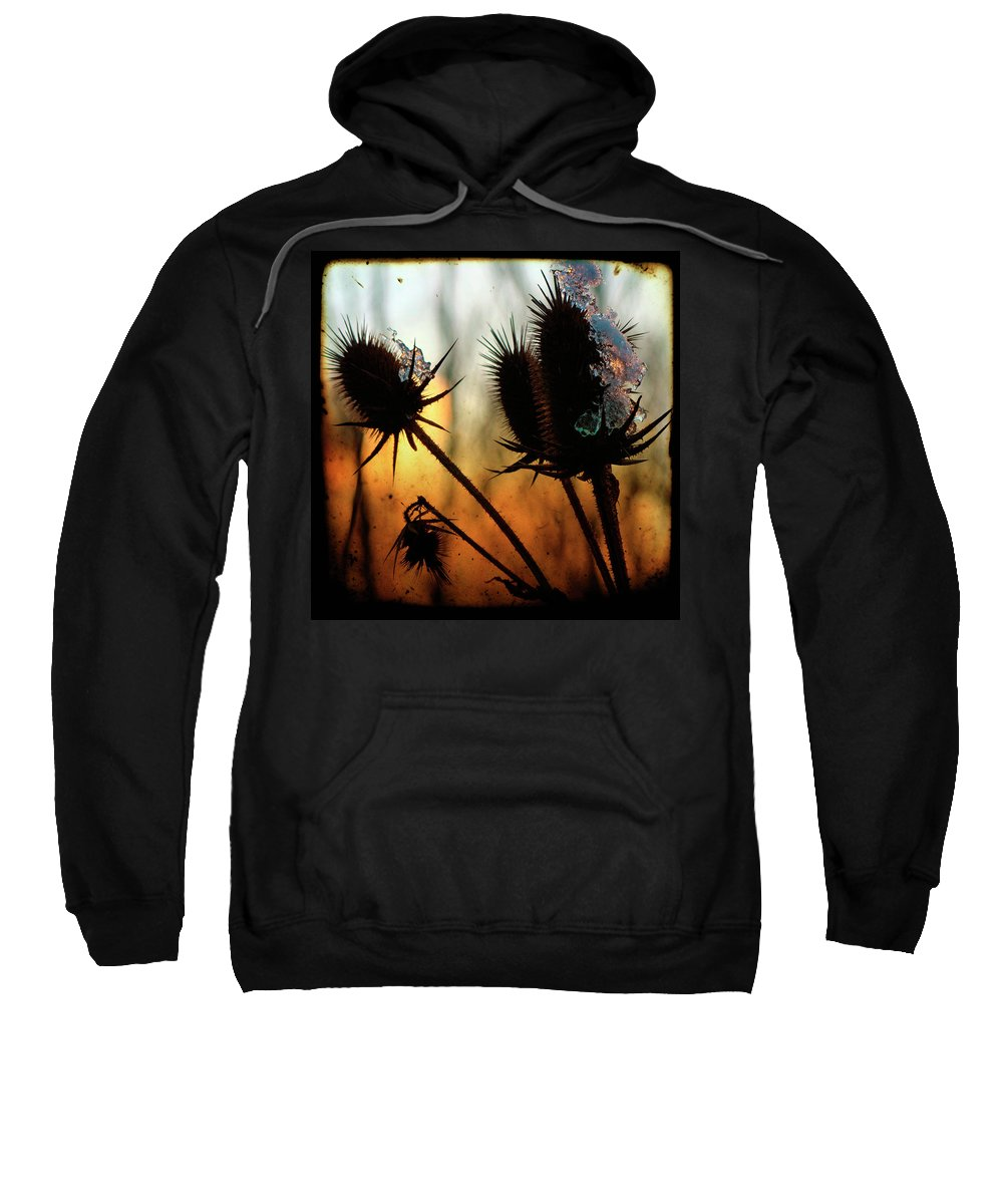 Teasel Sweatshirt featuring the photograph C Est La Vie Sunset by Gothicrow Images