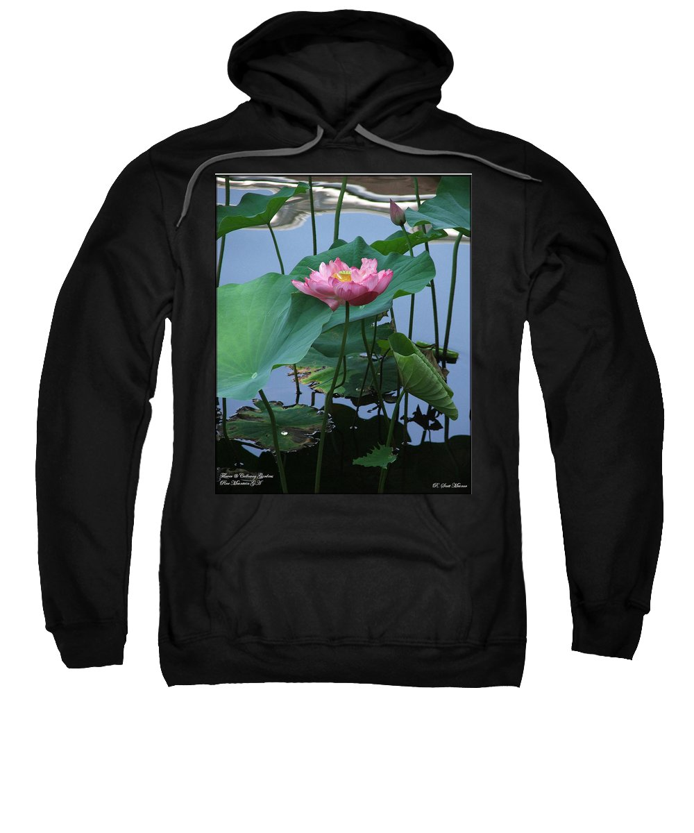 Lotus Sweatshirt featuring the photograph Lotus Flower At Calloway by Robert Meanor