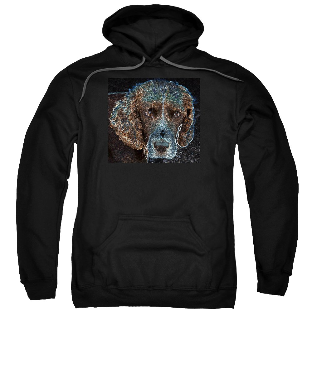 Macro Sweatshirt featuring the photograph Old Blue Eyes by Dave Byrne
