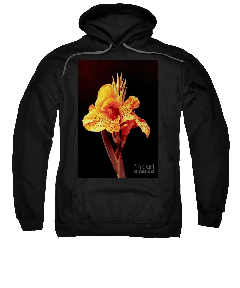 Nola Sweatshirt featuring the photograph Canna Lilly In New Orleans by Michael Hoard