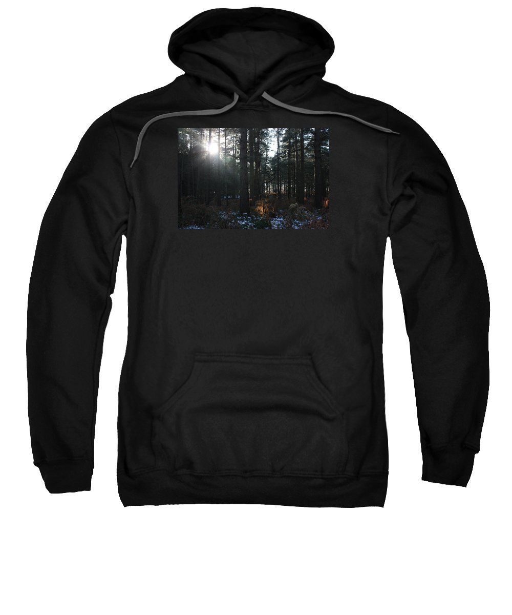 Cannock Chase Forest Sweatshirt featuring the photograph Cannock Chase by Jean Walker
