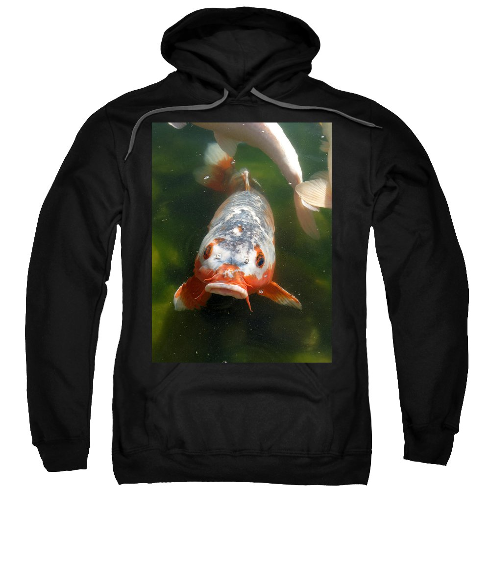 Fish Sweatshirt featuring the photograph Feed Me by Laurel Powell