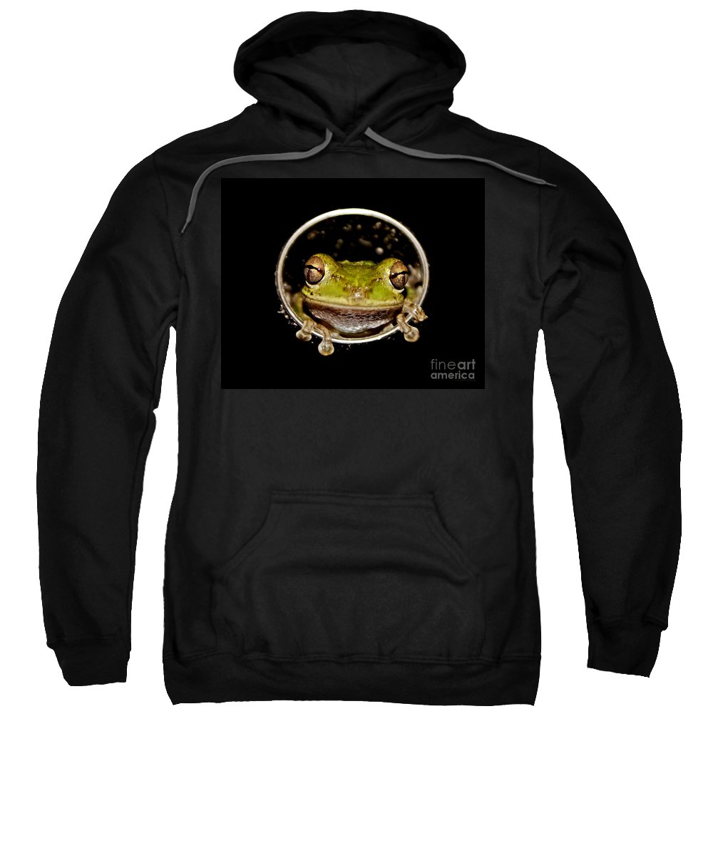 Macro Sweatshirt featuring the photograph Frog by Olga Hamilton