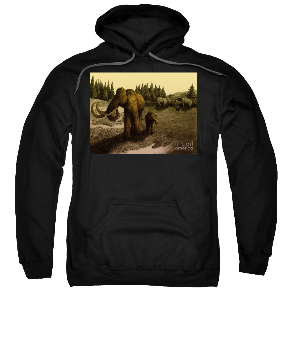Woolly Mammoth Sweatshirt featuring the photograph Mammoths by Spencer Sutton